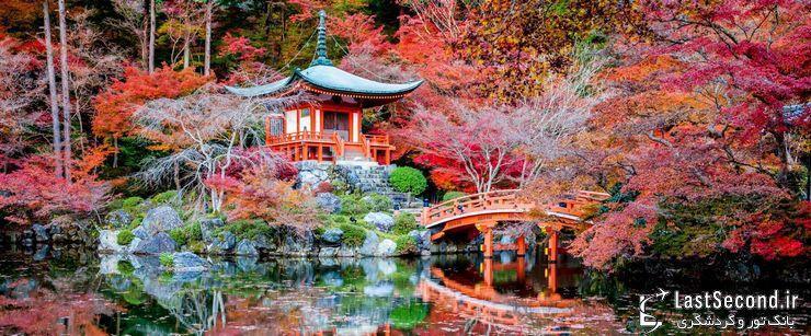آشنایی با شهر بسیار دیدنی کیوتو، ژاپن