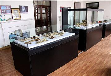 5000 شی تاریخی در موزه های زنجان نیازمند مرمت است