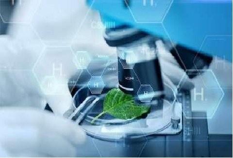 اعطای تسهیلات کم بهره به محصولات فناورانه دارای کارفرما
