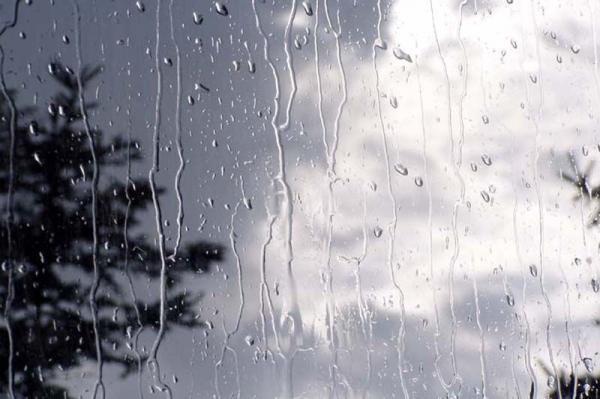 خبرنگاران باران پراکنده در بوشهر تا فردا ادامه دارد