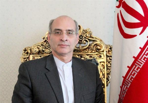 انتخاب مجدد نماینده ایران به عنوان معاون کمیته اجرایی سازمان منع سلاح های شیمیایی